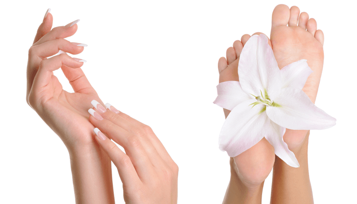 Hands modeling and feet holding flower