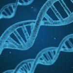 is hyperhidrosis hereditary